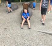 Зоопарк 2019 Ярик и бегемот